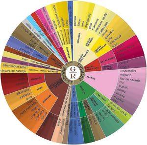 Cata de vinos: rueda de los aromas