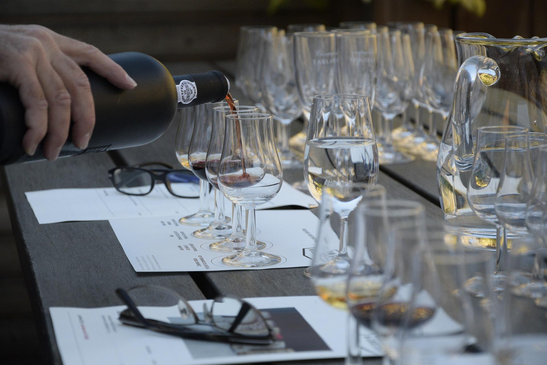 Cómo disfrutar de una cata de vinos: consejos básicos