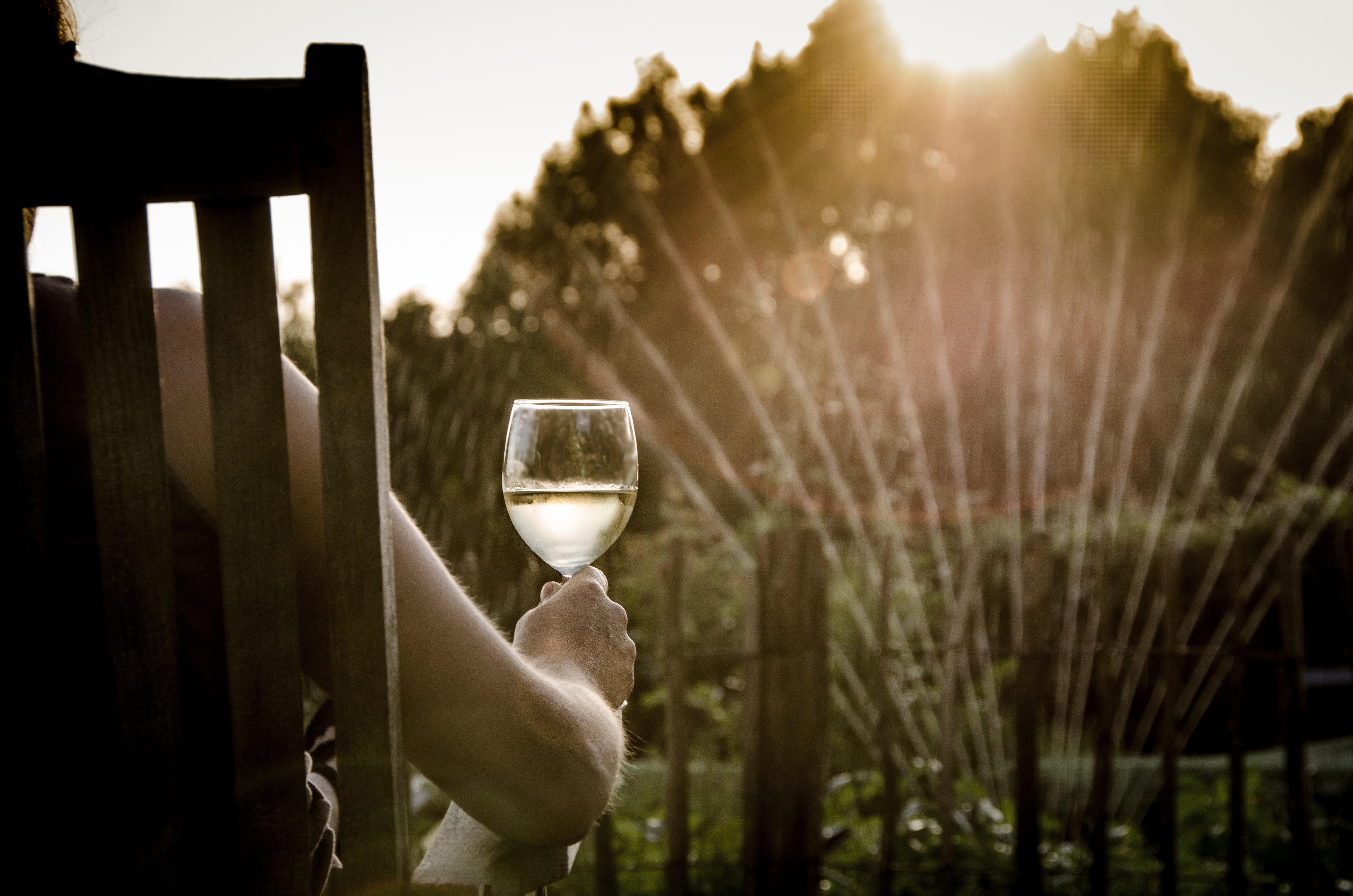 (Español) Los 20 términos más desconocidos del vino